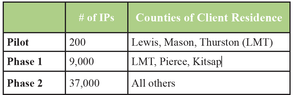 Table with data on numbers of IPs and counties.